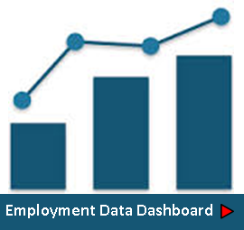 Employment Data Dashboard Image